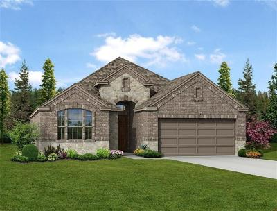 Little Elm Single Family Home For Sale: 2109 Lake Pine Drive