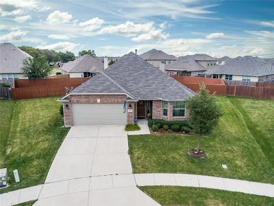 Little Elm Single Family Home For Sale: 2204 Jasmine Valley Drive