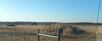 Mineral Wells TX Residential Lots & Land For Sale: $33,000