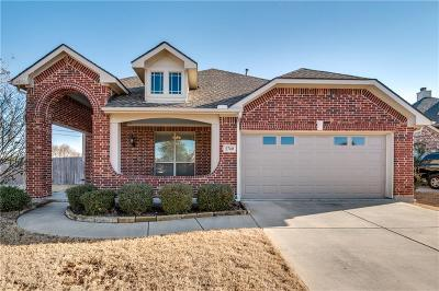 Little Elm Single Family Home For Sale: 2740 Pine Trail Drive