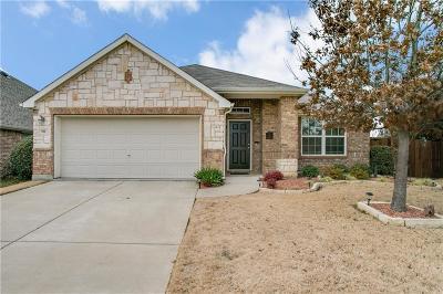 Little Elm Single Family Home For Sale: 900 Snowbird Drive