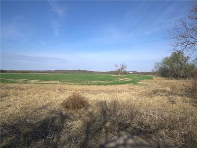 Mineral Wells Farm & Ranch For Sale: 420 Withers Road