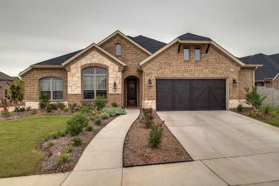 Argyle Single Family Home For Sale: 101 Sunrise Drive