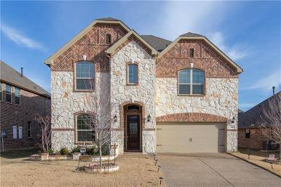 Lewisville Single Family Home For Sale: 333 Meadowview Way