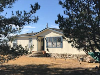 Weatherford Single Family Home For Sale: 150 Timber Wild Drive