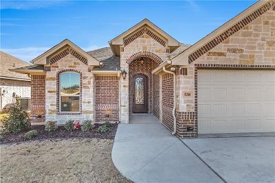 Granbury Single Family Home For Sale: 538 Clearwater Place