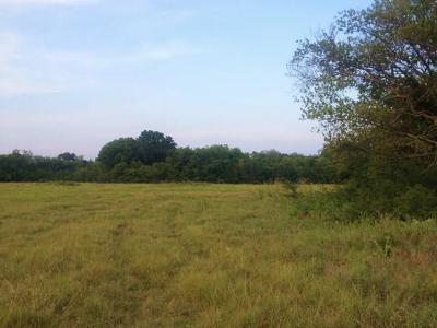 Decatur Residential Lots & Land For Sale: 622 County Road 4223
