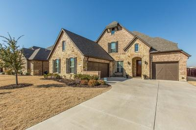 Frisco Single Family Home For Sale: 4291 Vista Terrace Drive