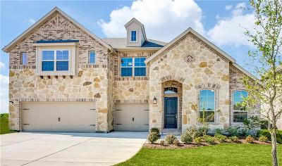 Flower Mound Single Family Home For Sale: 11317 Bull Head Lane