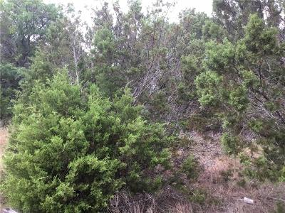 Hood County Residential Lots & Land For Sale: 2219 Comet Trail