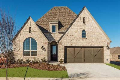 Little Elm Single Family Home For Sale: 5105 Shallow Pond Drive