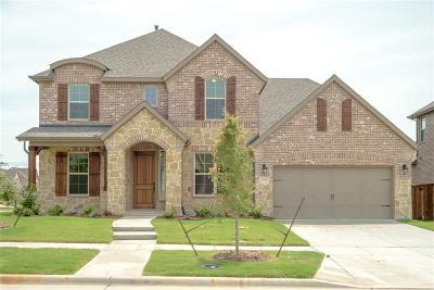 Frisco Single Family Home For Sale: 13878 Vera Cruz Road