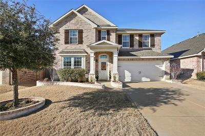 Little Elm Single Family Home For Sale: 2605 Waterdance Drive