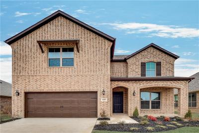 Prosper Single Family Home For Sale: 16509 Dry Creek Boulevard