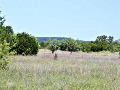 Palo Pinto Farm & Ranch For Sale: 983 N Lakeview Drive