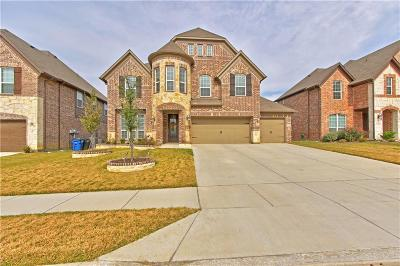 Little Elm Single Family Home For Sale: 2517 Lake Bend Drive