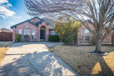 Sachse Single Family Home For Sale: 3128 Creek Hollow Drive