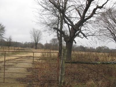 Cedar Creek Lake, Athens, Kemp Farm & Ranch For Sale: 10861 County Road 2139