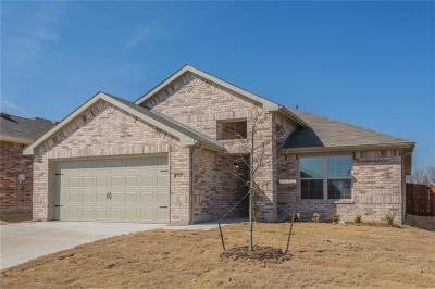 Fort Worth Single Family Home For Sale: 9209 Vistamill Trail
