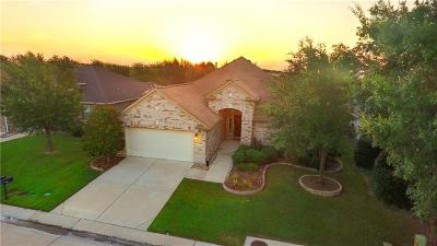Denton Single Family Home For Sale: 9509 Perimeter Street