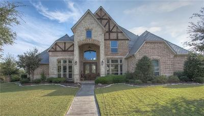 Fort Worth Single Family Home For Sale: 6716 Saucon Valley Drive