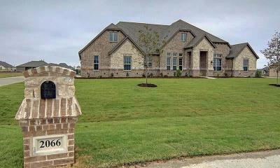 Single Family Home For Sale: 2053 Tapadero Ln