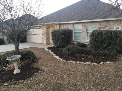Denton Single Family Home For Sale: 917 Chase Lane