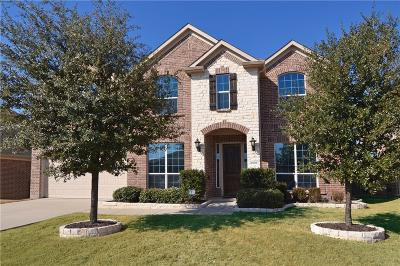 Little Elm Single Family Home For Sale: 2409 Hammock Lake Drive