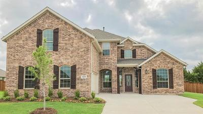 Rockwall Single Family Home For Sale: 3213 Pecos Lane