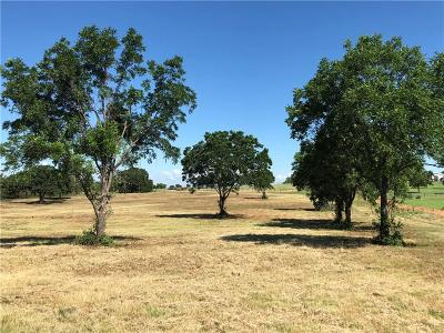 Parker County, Tarrant County, Wise County Residential Lots & Land For Sale: 387 Hereford Road