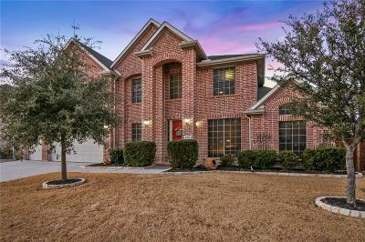 Little Elm Single Family Home For Sale: 2253 Hideaway Point Drive