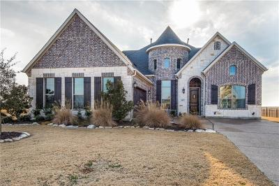 Gunter Single Family Home For Sale: 1817 Turtle Creek Lane
