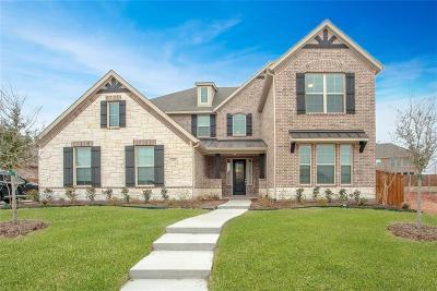 Prosper Single Family Home For Sale: 220 Dianna Drive