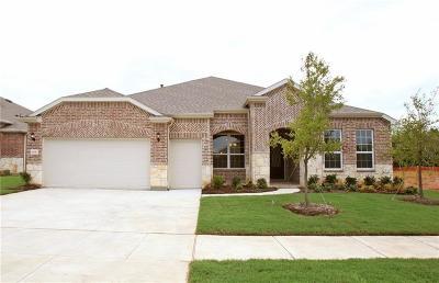 Frisco Single Family Home For Sale: 6654 Catalina Lane