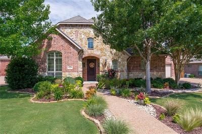 McKinney Single Family Home Active Contingent: 1405 Winter Haven Lane