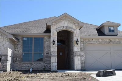 Aledo Single Family Home Active Contingent: 524 Sagebrush Court