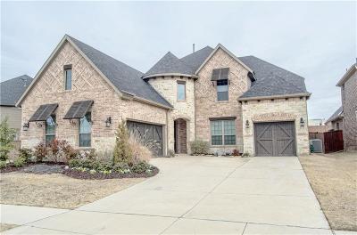 Allen Single Family Home For Sale: 2011 Grassland Drive
