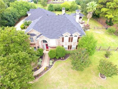 Double Oak Single Family Home For Sale: 441 Cross Timbers Drive