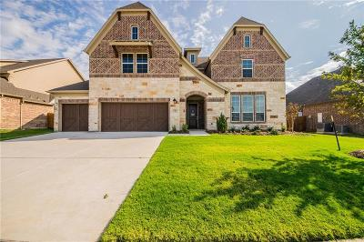Little Elm Single Family Home For Sale: 13700 Canals Drive