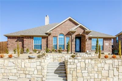 Sachse Single Family Home For Sale: 3402 Thunder Drive