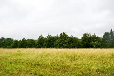 Dallas Residential Lots & Land For Sale: 1501 E Camp Wisdom Road