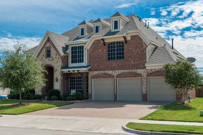 Grand Prairie Single Family Home For Sale: 3007 Meseta