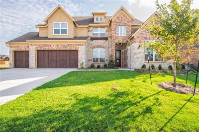 Little Elm Single Family Home For Sale: 13608 Canals Drive