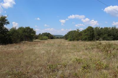 Palo Pinto Farm & Ranch For Sale: 0004 Rm 3137