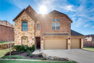 Rowlett Single Family Home For Sale: 4025 Dalton Drive