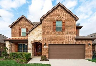Little Elm Single Family Home For Sale: 712 Sundrop Drive