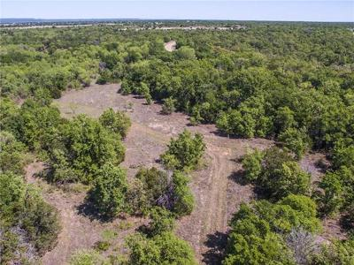 Palo Pinto Farm & Ranch For Sale: 0002 S Wilson Road