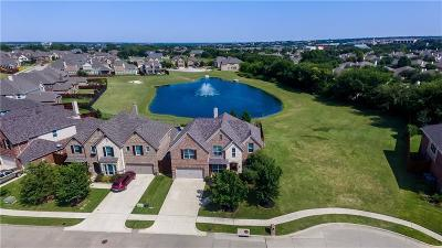 McKinney Single Family Home For Sale: 8009 Saint Clair Drive