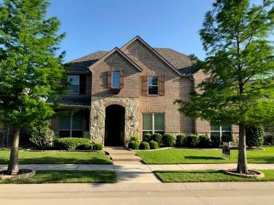 Lewisville Single Family Home For Sale: 2008 Torin Street