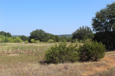 Palo Pinto Farm & Ranch For Sale: 0043 Rm 3137